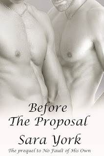 Before The Proposal