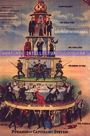 What Are Intellectuals Good For?: Essays & Reviews...